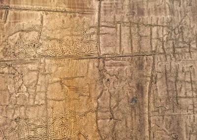 Laque matte en relief sur portes de penderie, détails