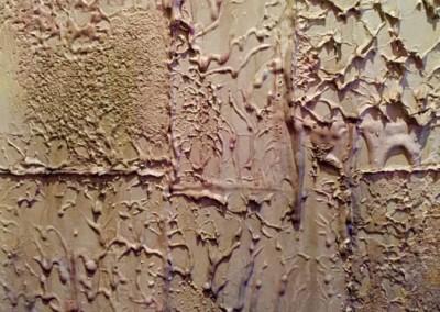Plâtre à la cire naturelle, détail de paroi