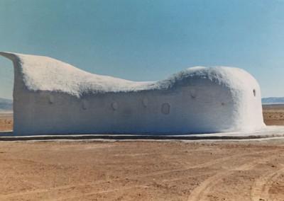 2004 – Musée du Dinosaure Sfissifa. Wilaya de Naama. Algérie.
